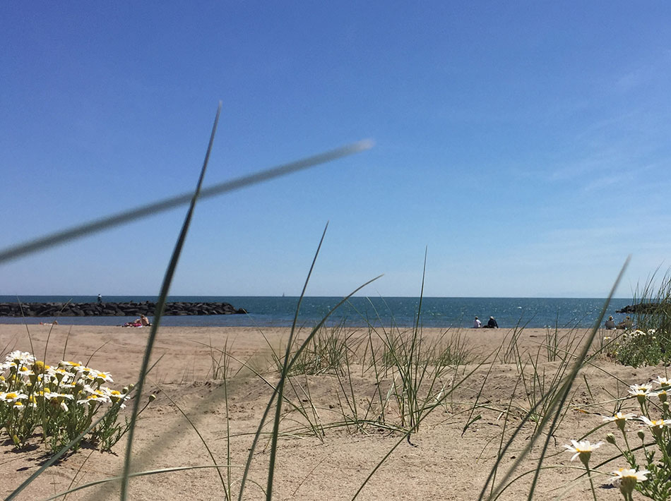 Camping bord de mer, plage de sable fin à Vias Plage