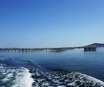 de zee op uw bord : oesters uit het Thau-bekken